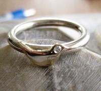 ring met merel zilver en diamant
